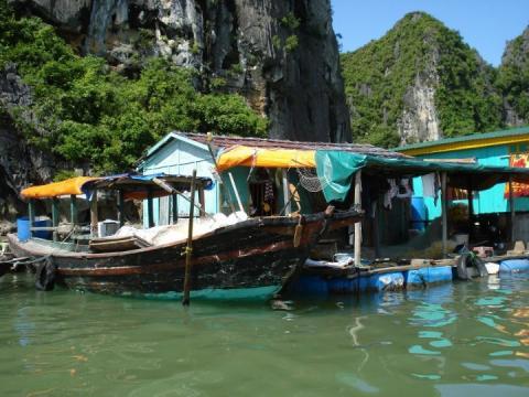 barcos-vietnam.jpg