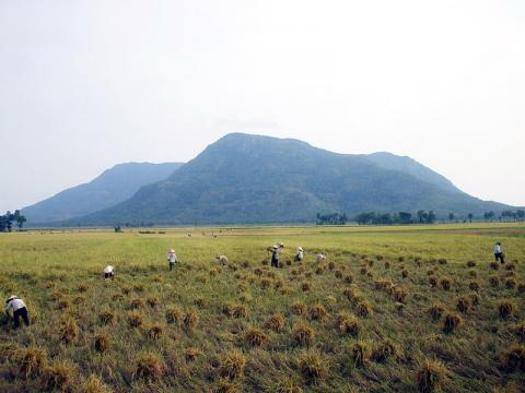 naturlaeza-vietnam.jpg